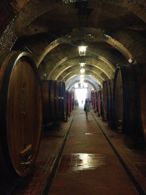 Talosa wine cellar